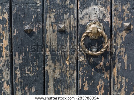 wooden door and ring
