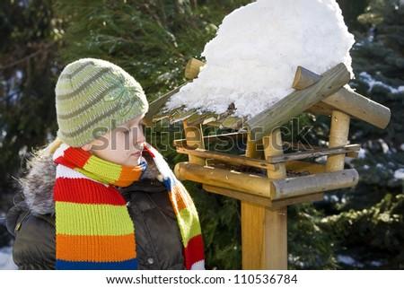 Wooden feeder for birds in snowy garden - stock photo