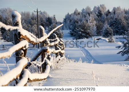 Wooden fence and snowy road into evergreen forest at winter season - stock photo