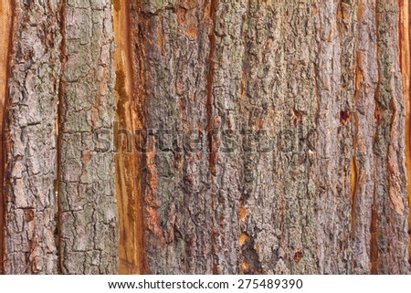 Wooden fence made of tree bark roughness in the sample is obviously a natural art. - stock photo