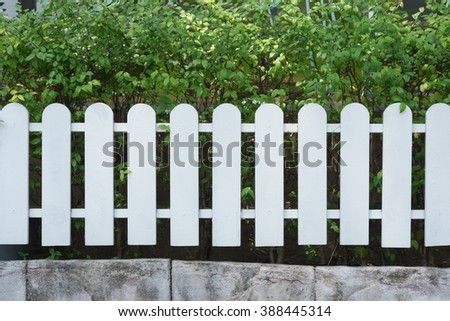 wooden fence with green lawn and trees