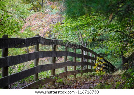 Wooden fences in forest - stock photo