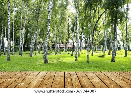 wooden floor and birch park