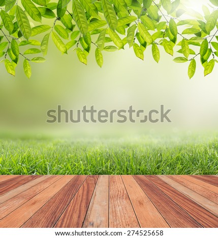 Wooden floor and sunlight nature background. - stock photo