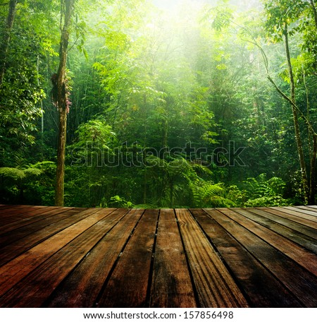 Wooden floor perspective and green forest with ray of light. - stock photo