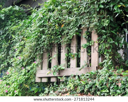 wooden gate at an old fence - stock photo