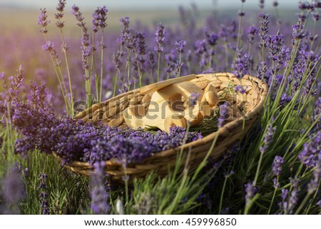 Wooden helicopter in basket with lavender