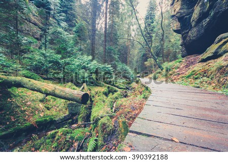 wooden hiking path through forest landscape - vintage look - stock photo