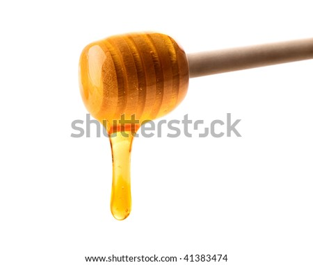 wooden honey dipper with a stream of honey - stock photo