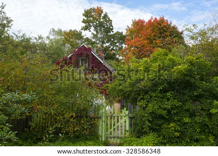 Wooden house among the yellowed trees - an autumn rural landscape