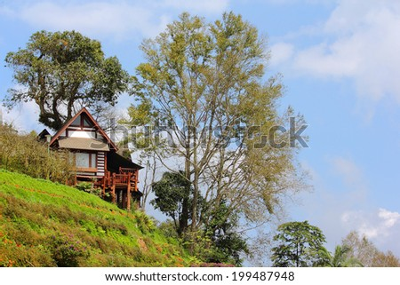 Wooden house in forest, house made of natural materials. - stock photo