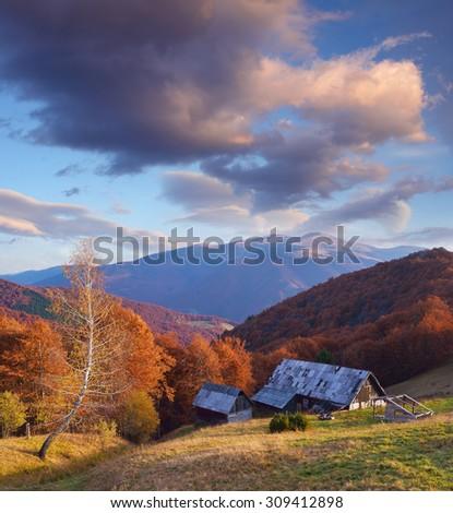 Wooden house in the mountain village. Autumn landscape. Sunny evening. Carpathians, Ukraine, Europe - stock photo