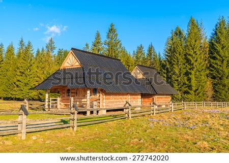 Wooden huts on pasture with blooming crocus flowers in Chocholowska valley, Tatra Mountains, Poland - stock photo