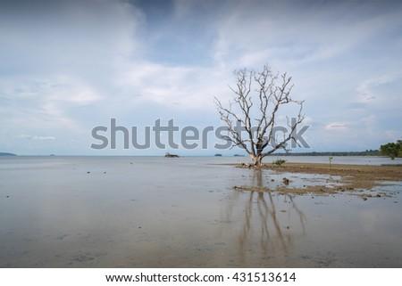 Wooden jetty leading to sea of Koh Mak island, Trat, Thailand - stock photo