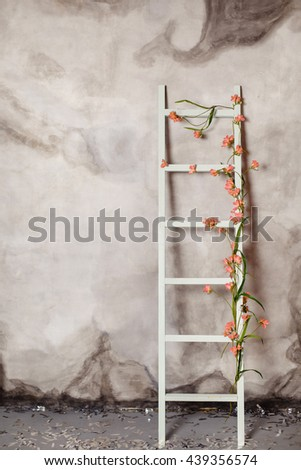 Wooden ladder with flowers, near gray plaster wall - stock photo