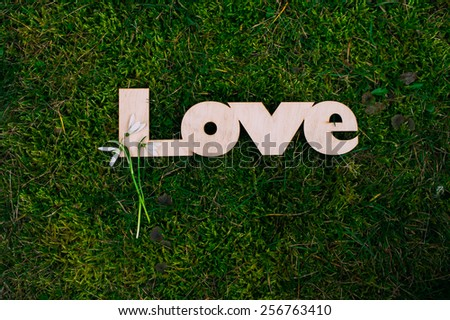 Wooden letters love - stock photo
