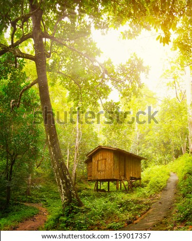 tree house stock images royaltyfree images amp vectors