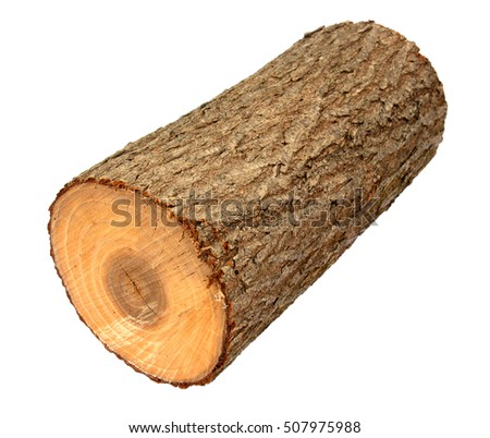 Log isolated stock images royalty free images vectors for Tree log