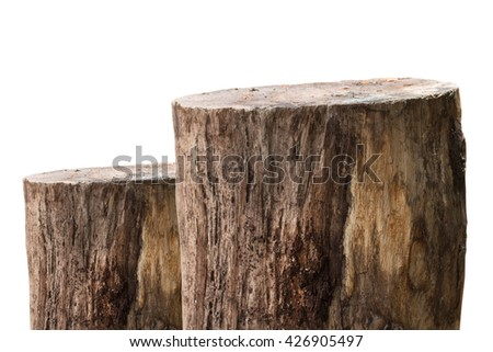 wooden log or wooden timber isolated on white background.