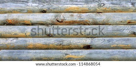 wooden logs with natural pattern grunge background - stock photo