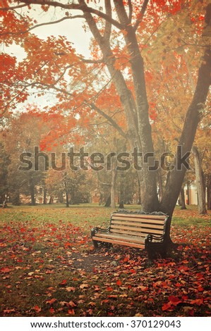 Wooden lonely bench under the yellowed and red trees in the autumn park in mist. Vintage filter processing.
