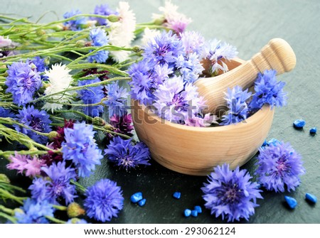 wooden mortar and flowers. spa concept - stock photo