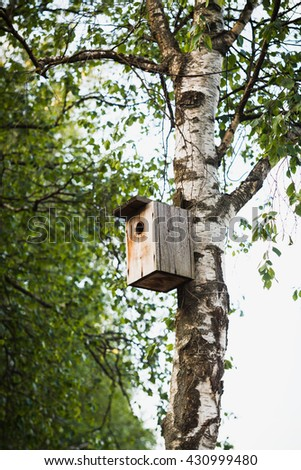 Wooden nesting box on a white-black trunk of a birch - stock photo