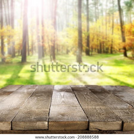 wooden old table and forest  - stock photo