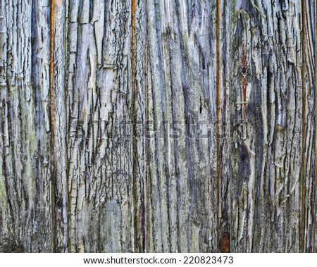Wooden old vintage background texture