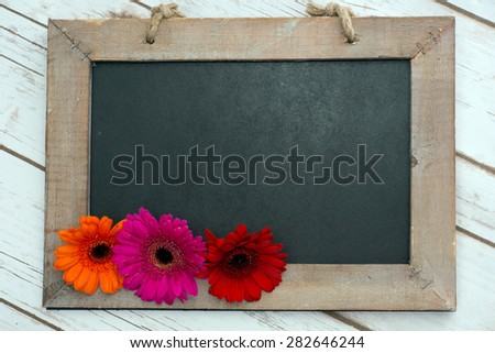 Wooden panel with Gerberas / Gerbera and shield - stock photo