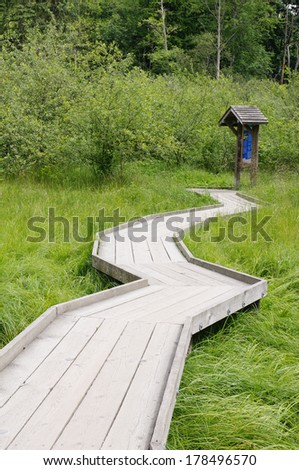 Wooden path in swamp, Port Moody, Canada - stock photo