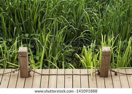 wooden  path with railing - stock photo