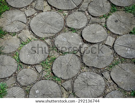 Wooden pavement made from cross section of tree trunk - stock photo