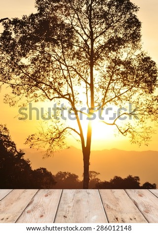 wooden plank platform on silhouette tree background with beautiful sunset sky - stock photo