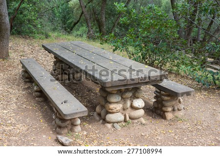 Wooden planked picnic table for lunch in the wilderness of a state park. - stock photo