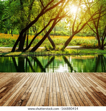 Wooden platform and forest - stock photo