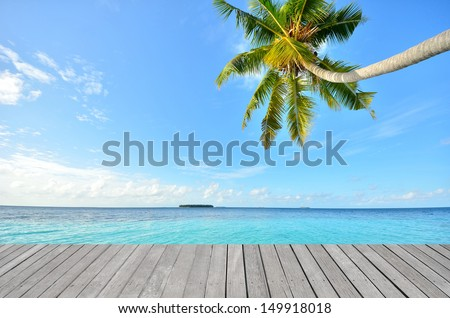 Wooden platform beside tropical beach with coconut palm - stock photo