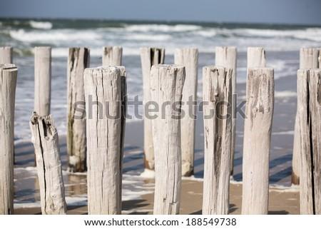 Wooden poles on the beach - stock photo