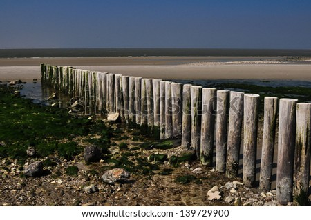 wooden poles on the coastline of ameland the netherlands - stock photo