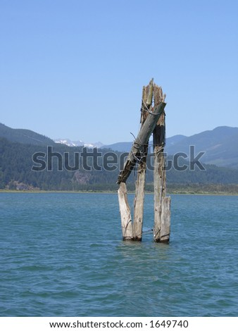 Wooden Post in a River - stock photo