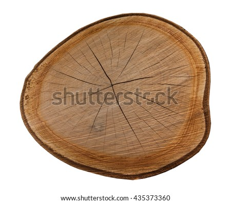 Wooden slice on the white background