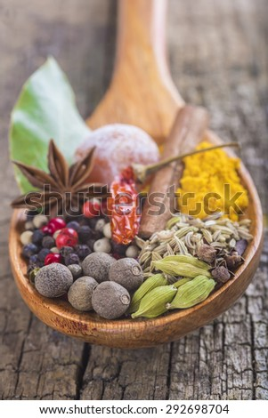 Wooden spoon with assortment of spices on the cutting board - stock photo