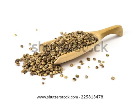 Wooden spoon with hemp seeds on white background - stock photo