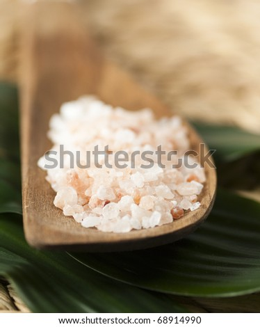 Wooden spoon with himalayan  salt - stock photo
