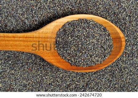 Wooden spoon with poppy seeds - stock photo