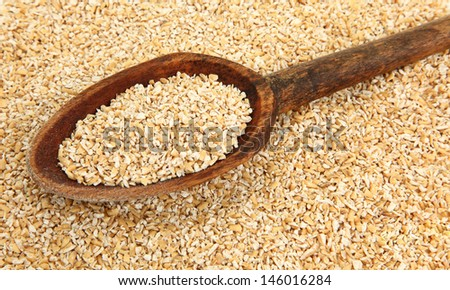 Wooden Spoon With Raw Steel Cut Oatmeal - stock photo