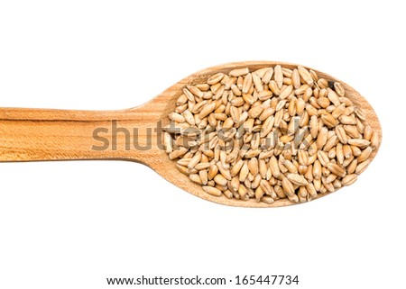 Wooden Spoon With Wheat Grains Isolated On White Background - stock photo