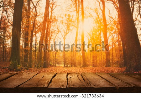 Wooden table. Autumn design with leaves falling in  forest and empty display. Space for your montage. Season fall background - stock photo