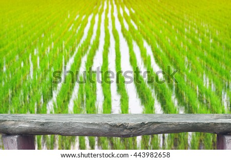 Wooden table for product display over blurred cornfield background. - stock photo