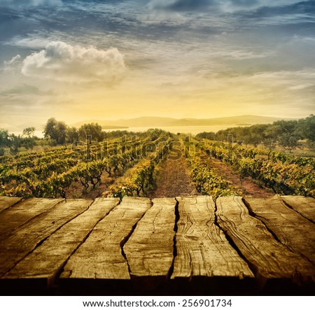 Wooden table. Spring design with vineyard and empty display. Space for your montage. Autumn grapes harvest - stock photo